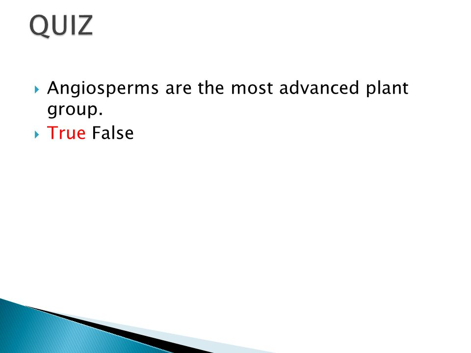 QUIZ Angiosperms are the most advanced plant group. True False
