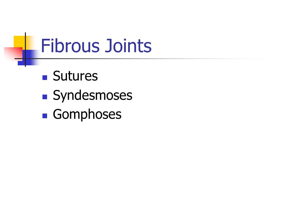 Fibrous Joints Sutures Syndesmoses Gomphoses