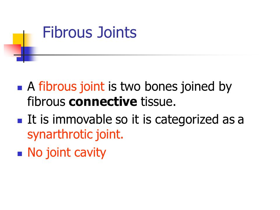 Fibrous Joints A fibrous joint is two bones joined by fibrous connective tissue. It is immovable so it is categorized as a synarthrotic joint.
