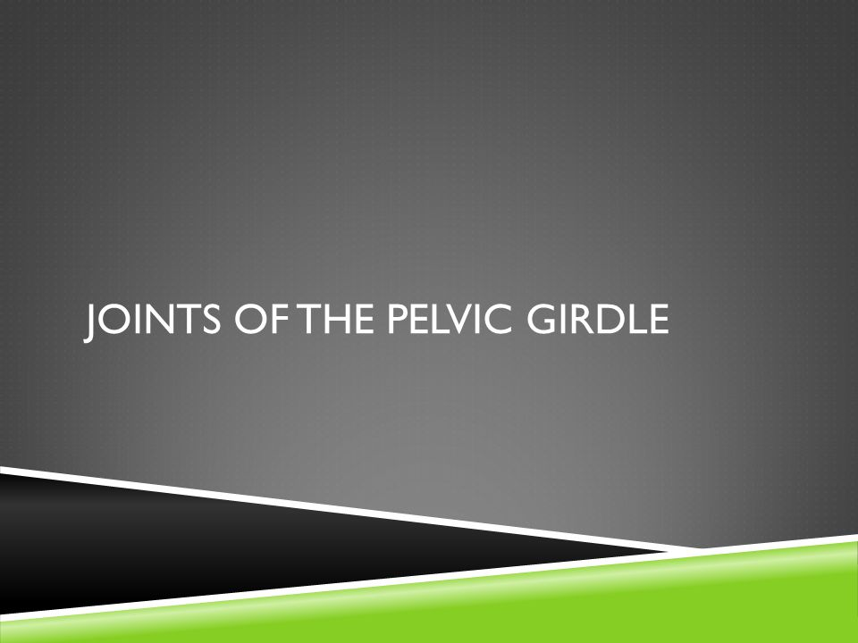 Joints of the Pelvic Girdle