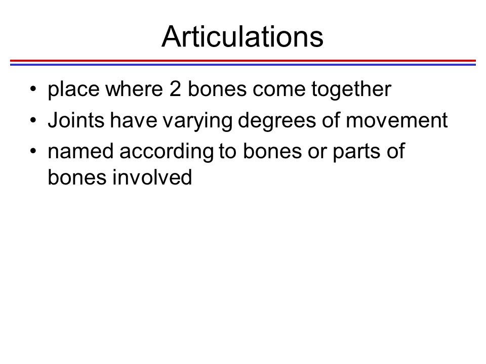 Articulations place where 2 bones come together