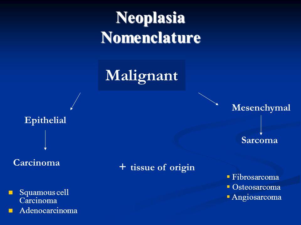 Neoplasia Nomenclature