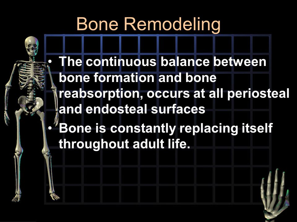Bone Remodeling The continuous balance between bone formation and bone reabsorption, occurs at all periosteal and endosteal surfaces.
