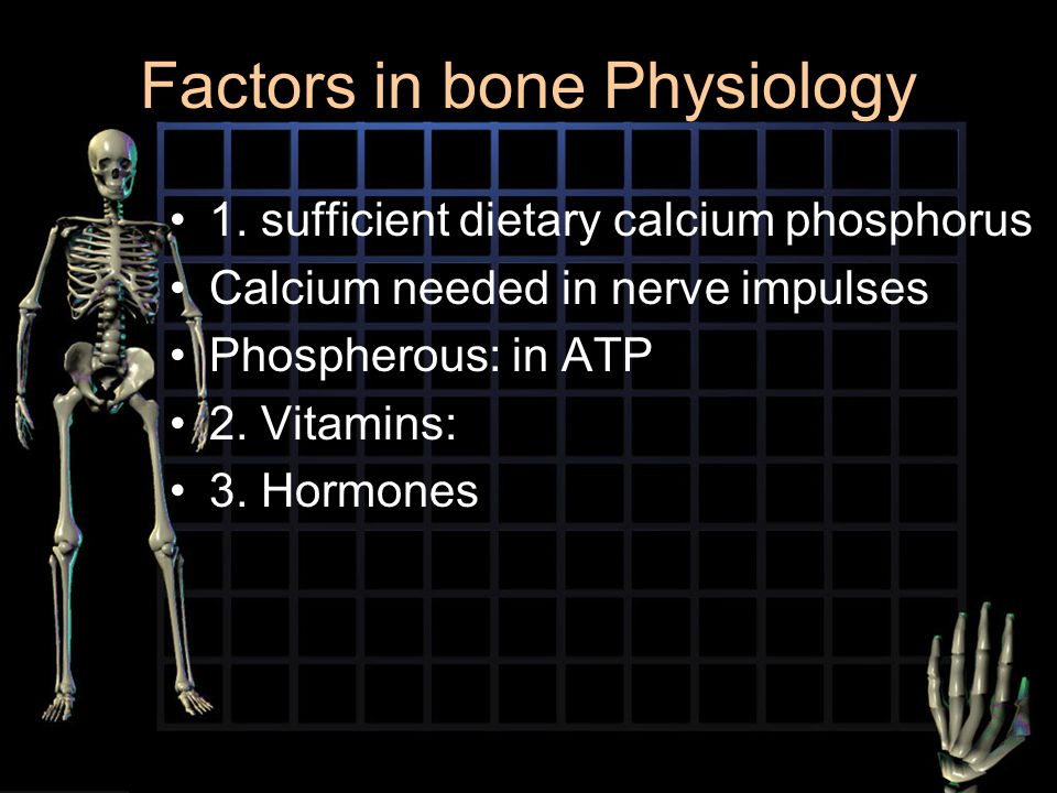 Factors in bone Physiology