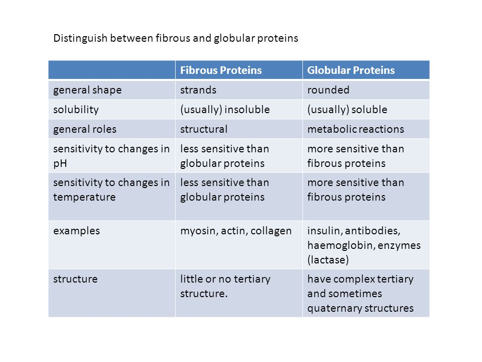 Distinguish between fibrous and globular proteins