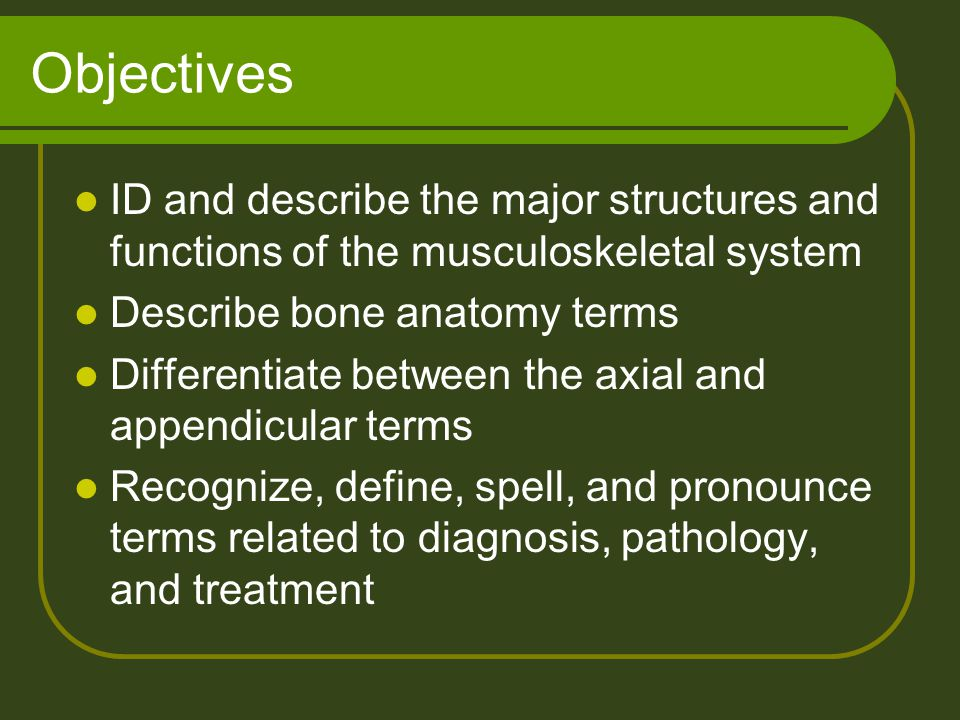 Objectives ID and describe the major structures and functions of the musculoskeletal system. Describe bone anatomy terms.