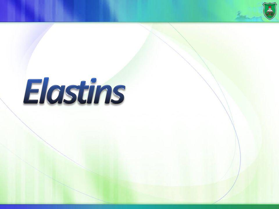 Elastins