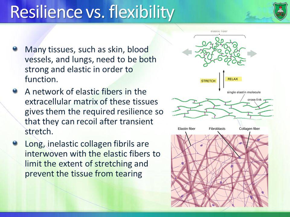 Resilience vs. flexibility