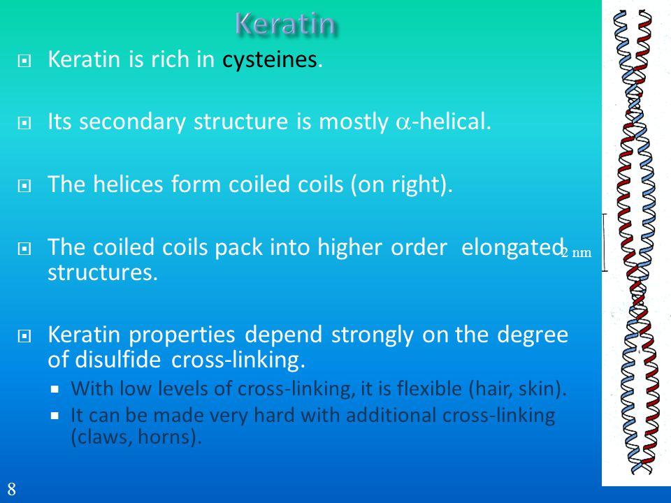 Keratin Keratin is rich in cysteines.
