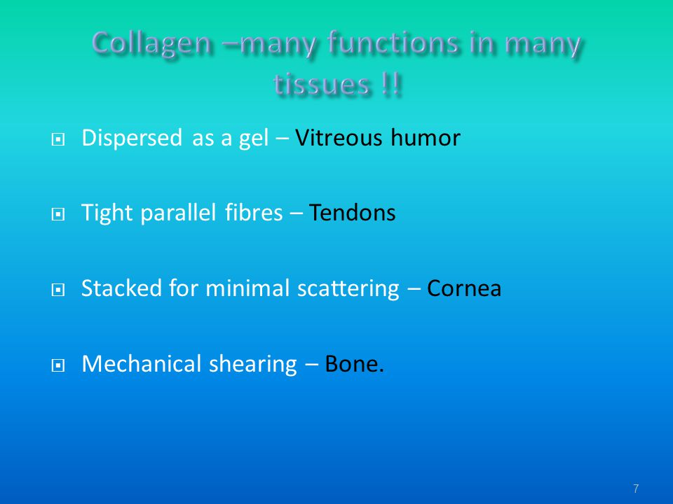 Collagen –many functions in many tissues !!