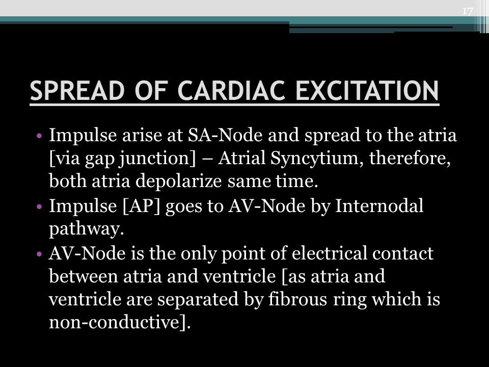 SPREAD OF CARDIAC EXCITATION