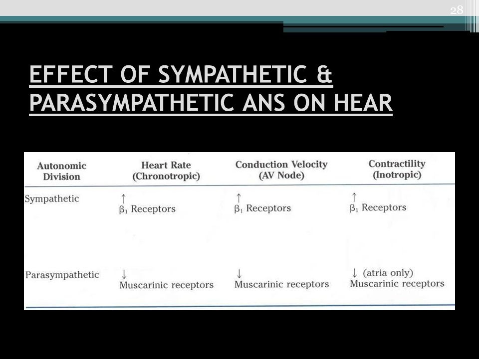 EFFECT OF SYMPATHETIC & PARASYMPATHETIC ANS ON HEAR