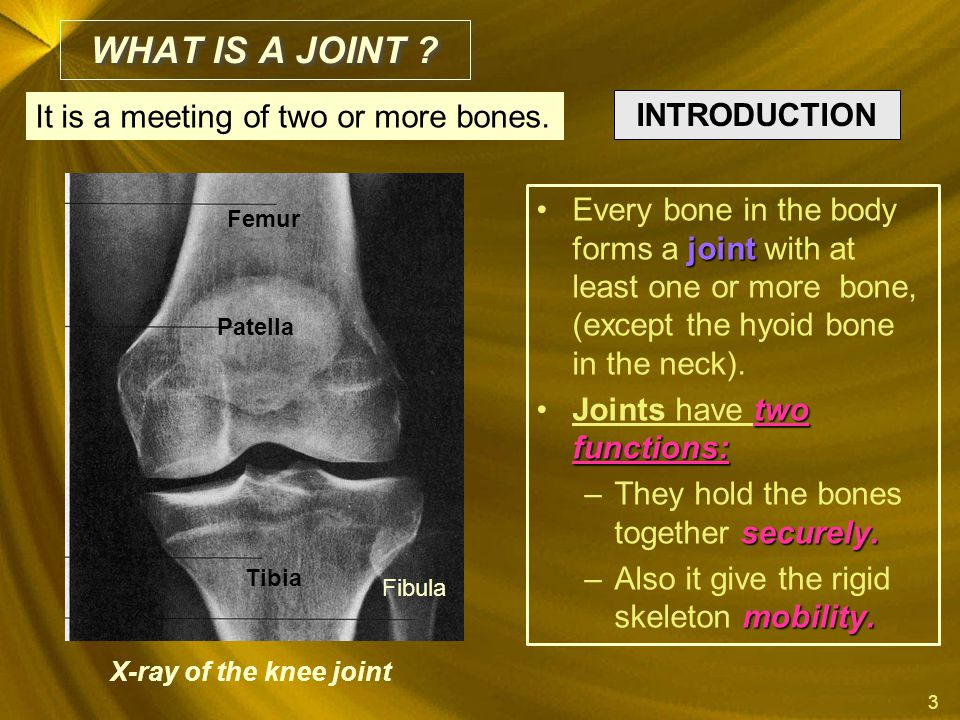 WHAT IS A JOINT It is a meeting of two or more bones. INTRODUCTION