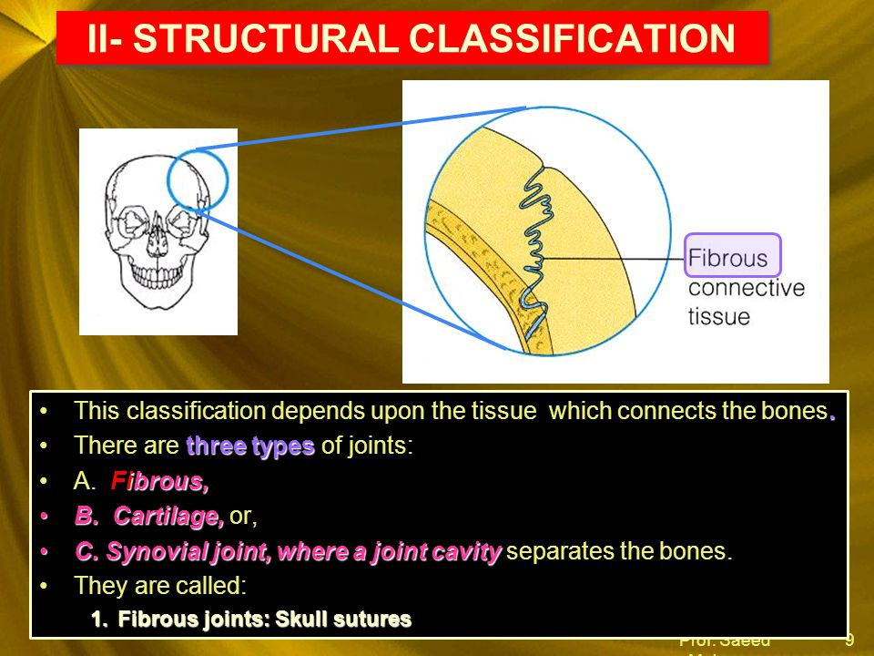 II- STRUCTURAL CLASSIFICATION