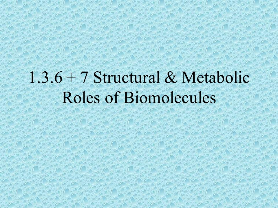 1.3.6 + 7 Structural & Metabolic Roles of Biomolecules