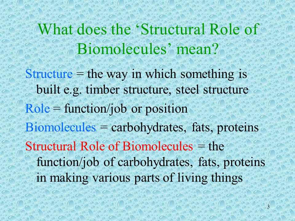 What does the 'Structural Role of Biomolecules' mean