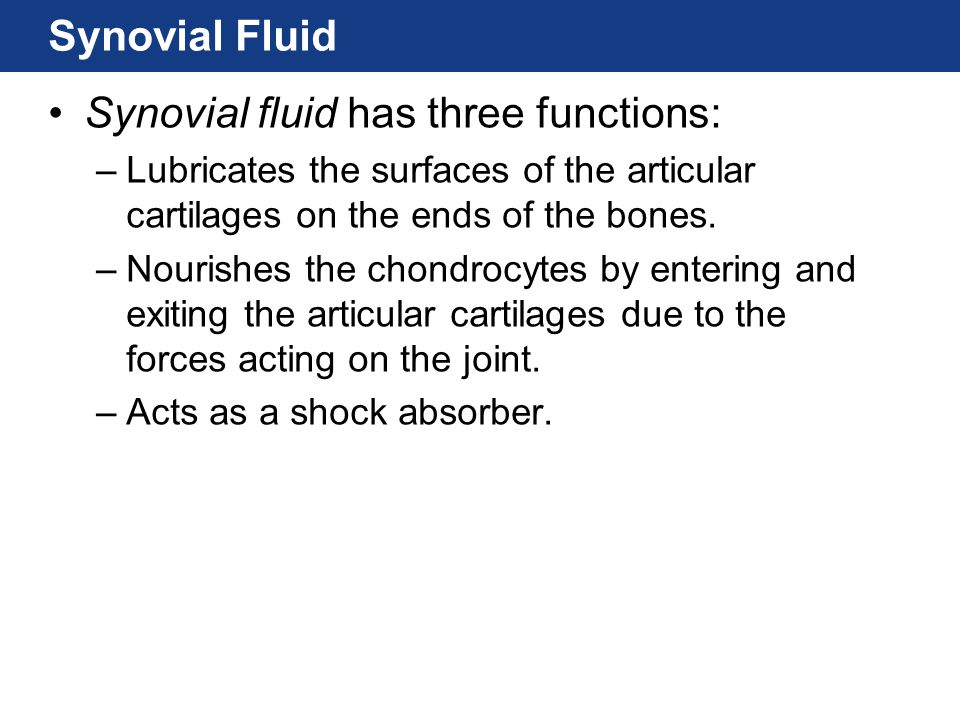 Synovial fluid has three functions: