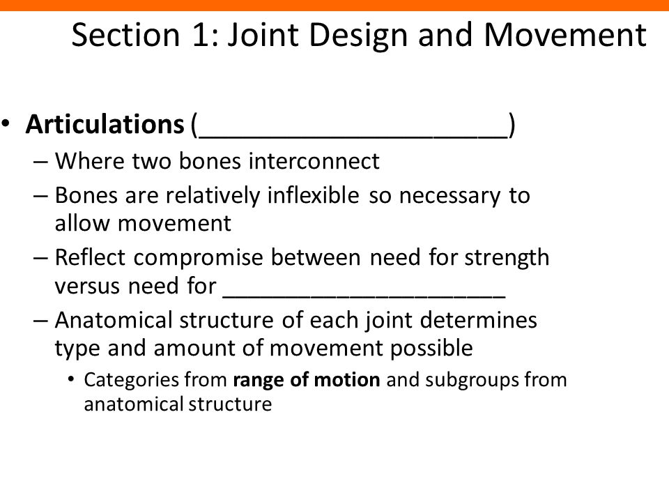 Section 1: Joint Design and Movement