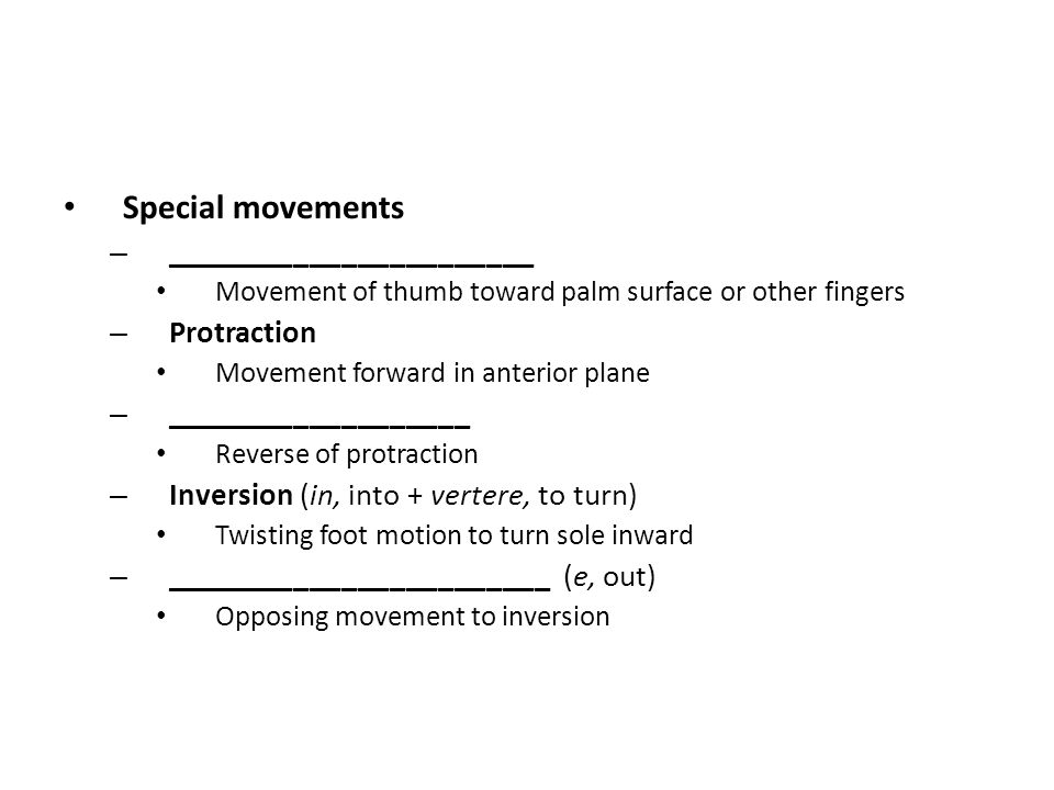 Special movements _______________________ Protraction