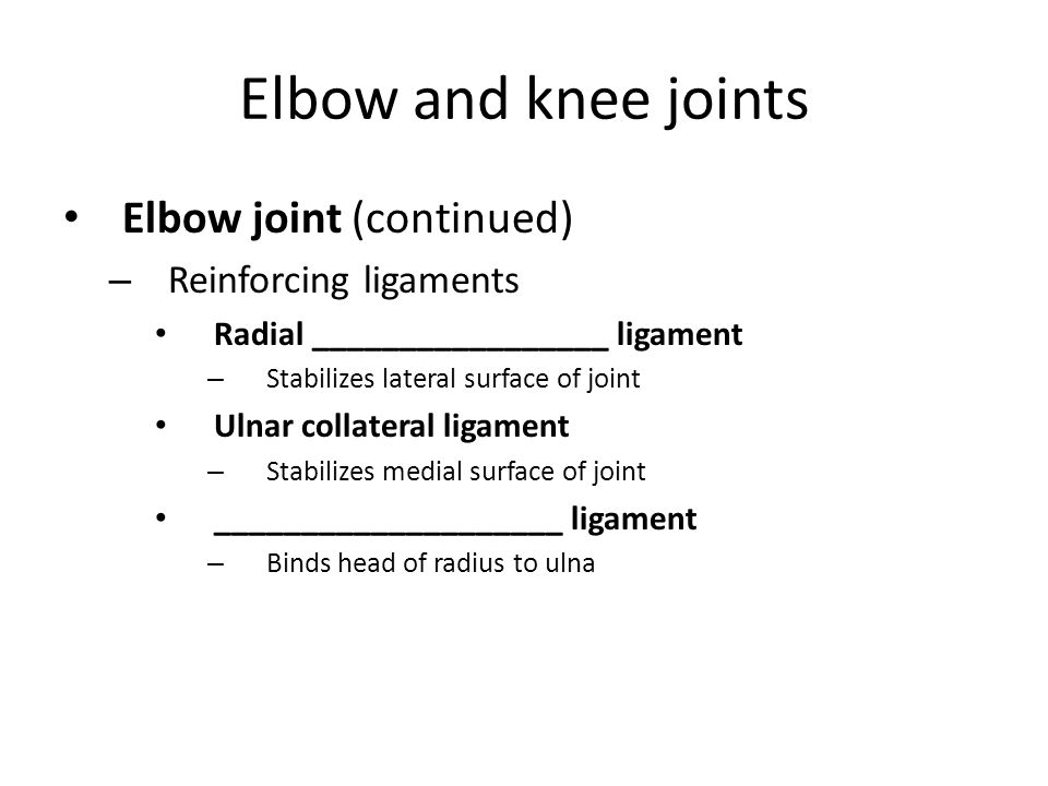 Elbow and knee joints Elbow joint (continued) Reinforcing ligaments