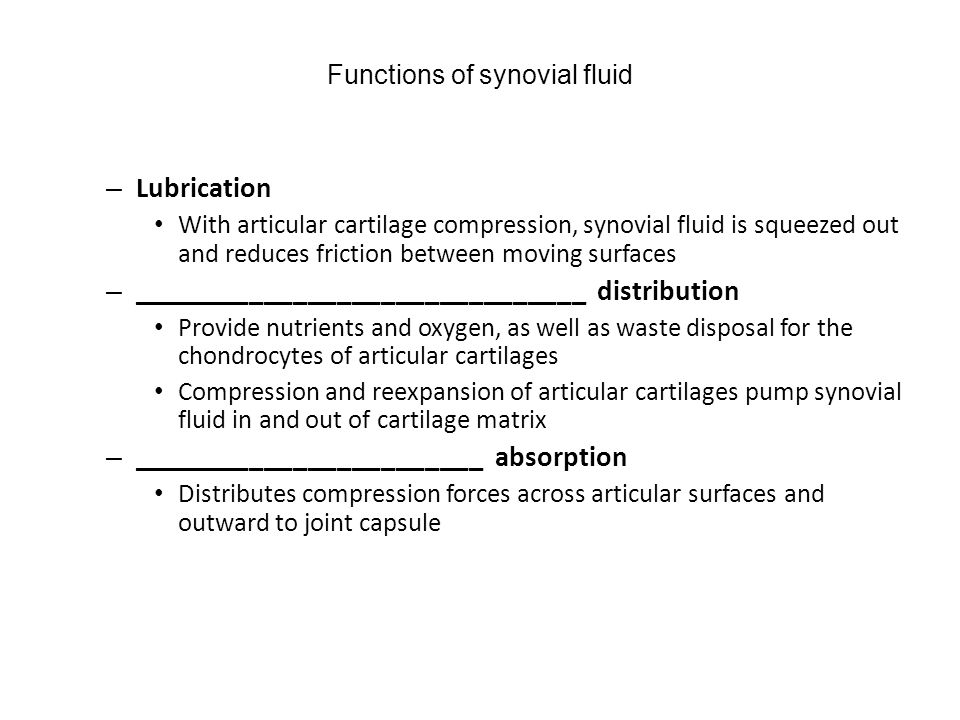 Functions of synovial fluid