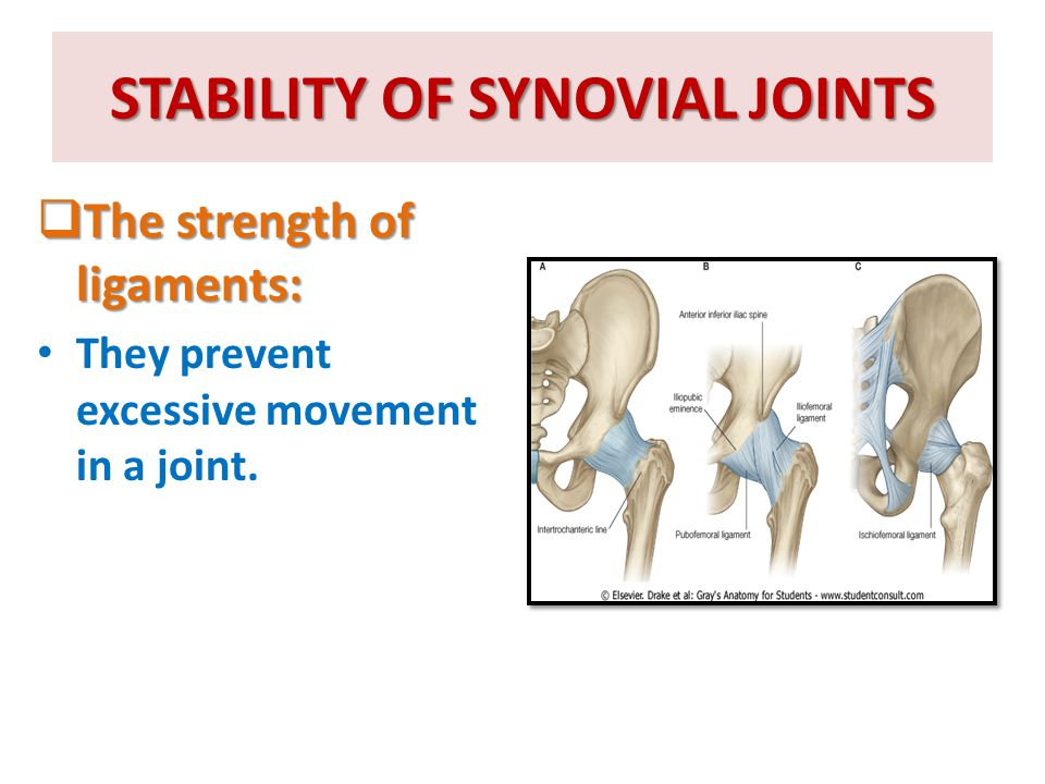 STABILITY OF SYNOVIAL JOINTS