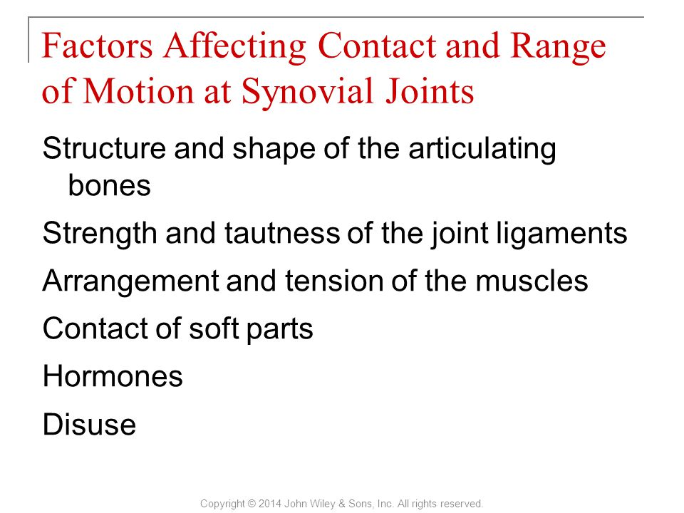 Factors Affecting Contact and Range of Motion at Synovial Joints