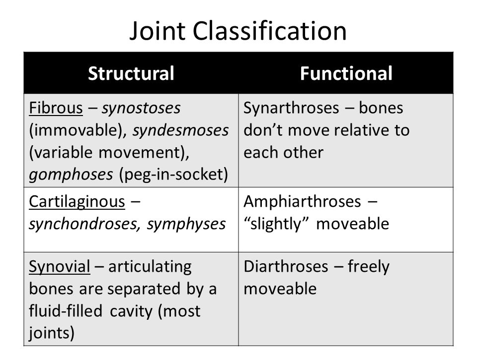Joint Classification Structural Functional