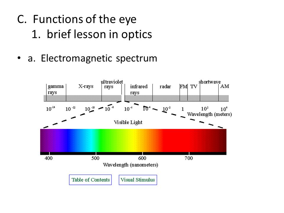 C. Functions of the eye 1. brief lesson in optics
