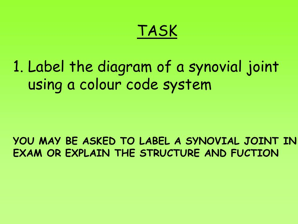 Label the diagram of a synovial joint using a colour code system
