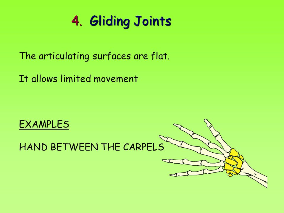4. Gliding Joints The articulating surfaces are flat.