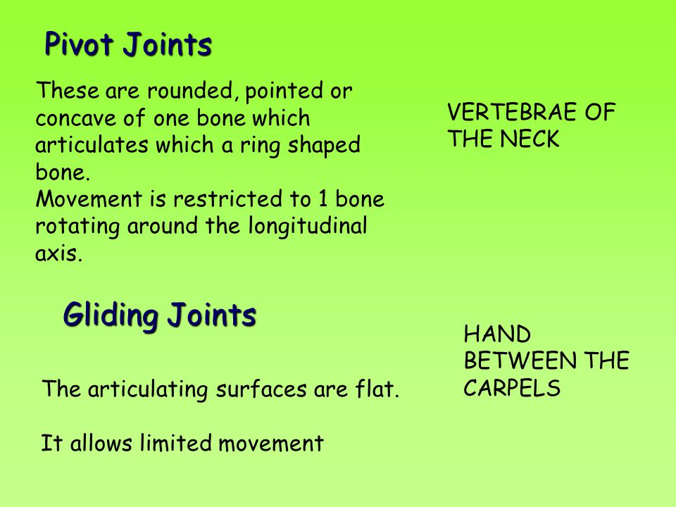 Pivot Joints Gliding Joints VERTEBRAE OF THE NECK
