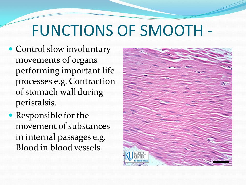 FUNCTIONS OF SMOOTH -