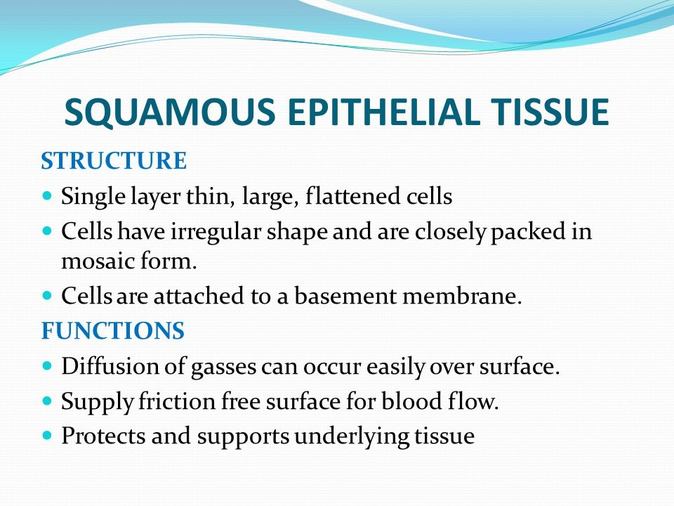 SQUAMOUS EPITHELIAL TISSUE