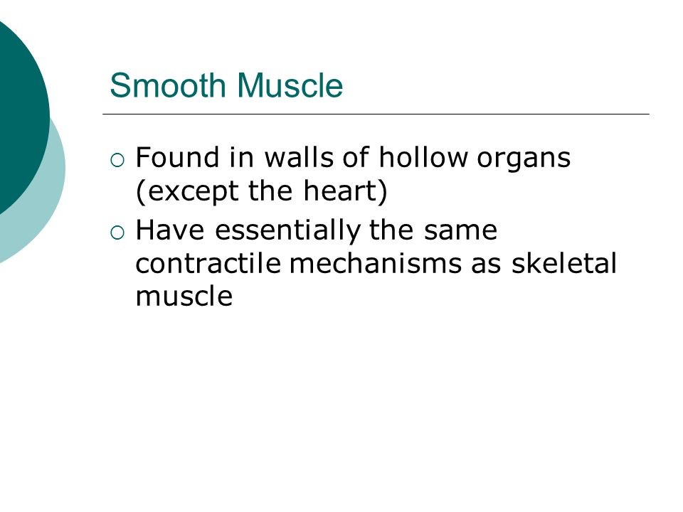 Smooth Muscle Found in walls of hollow organs (except the heart)