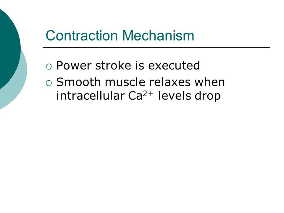 Contraction Mechanism