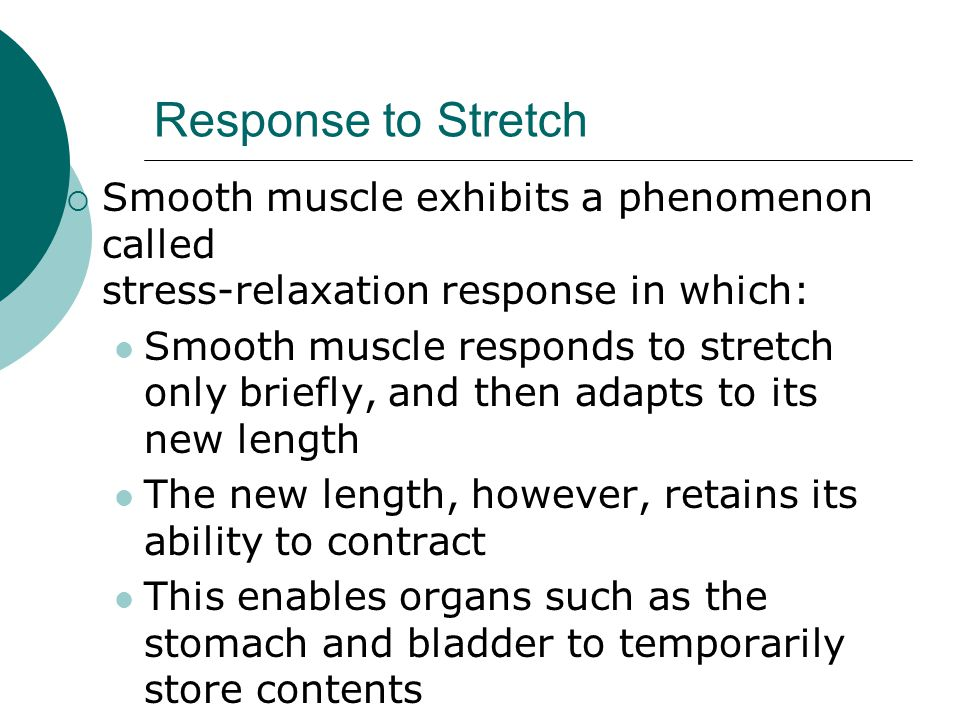 Response to Stretch Smooth muscle exhibits a phenomenon called stress-relaxation response in which: