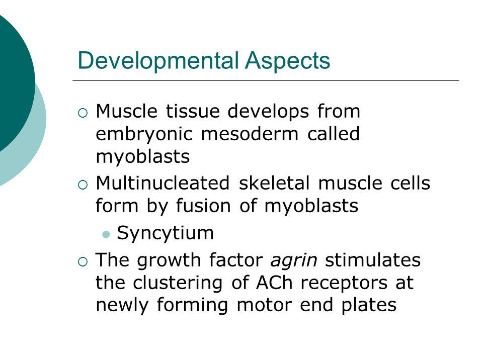 Developmental Aspects