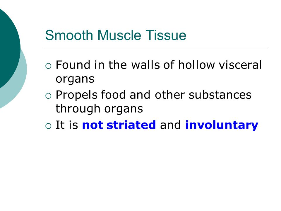 Smooth Muscle Tissue Found in the walls of hollow visceral organs