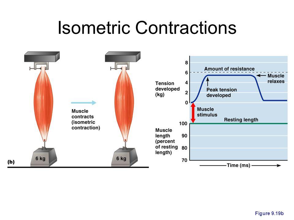 Isometric Contractions