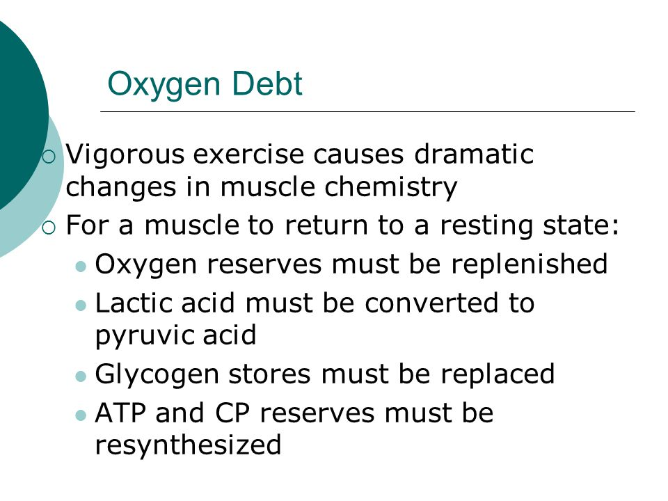 Oxygen Debt Vigorous exercise causes dramatic changes in muscle chemistry. For a muscle to return to a resting state: