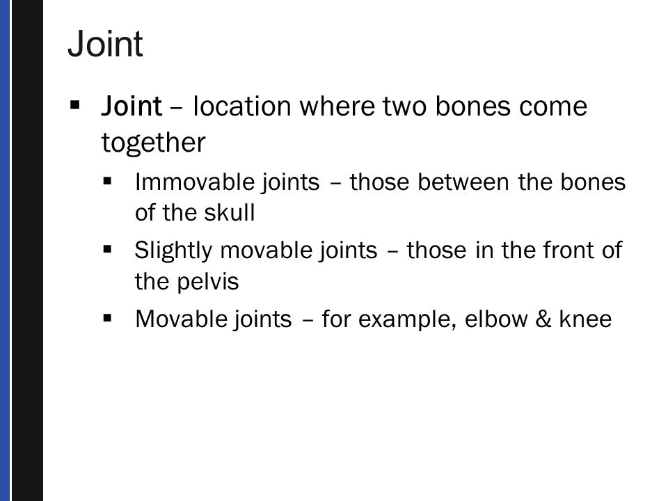 Joint Joint – location where two bones come together