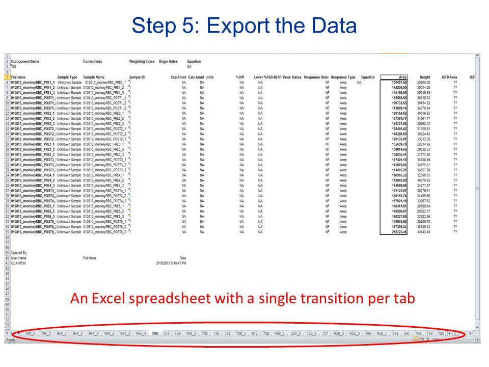 Step 5: Export the Data An Excel spreadsheet with a single transition per tab
