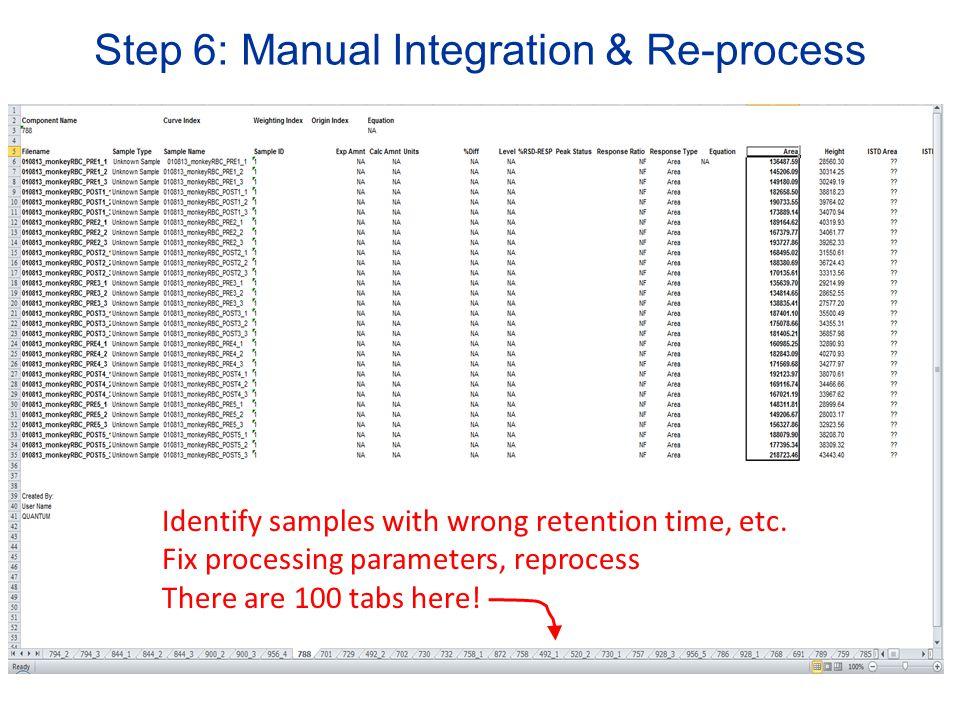 Step 6: Manual Integration & Re-process
