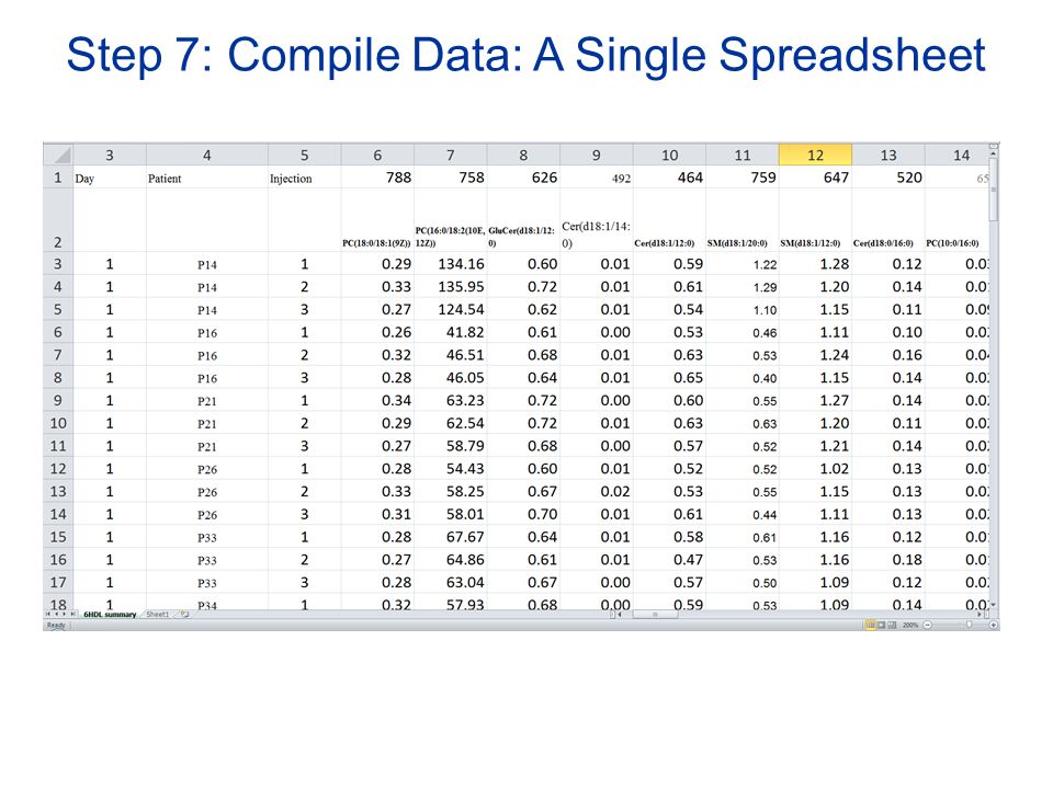 Step 7: Compile Data: A Single Spreadsheet