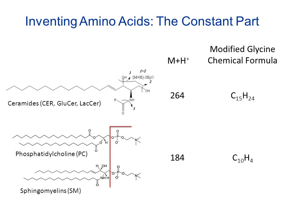 Inventing Amino Acids: The Constant Part