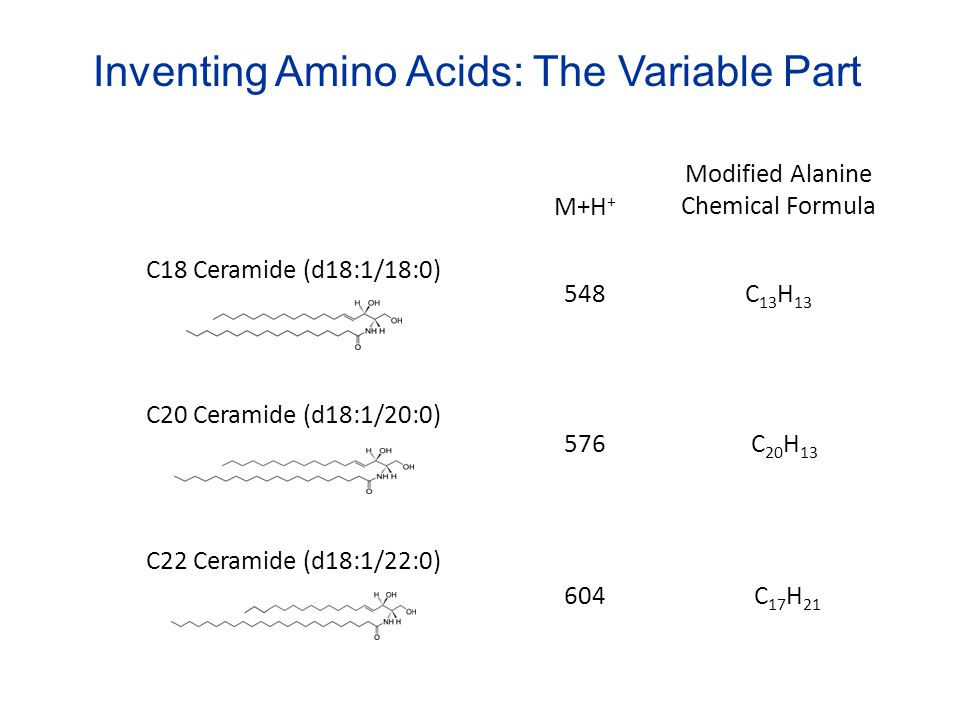 Inventing Amino Acids: The Variable Part
