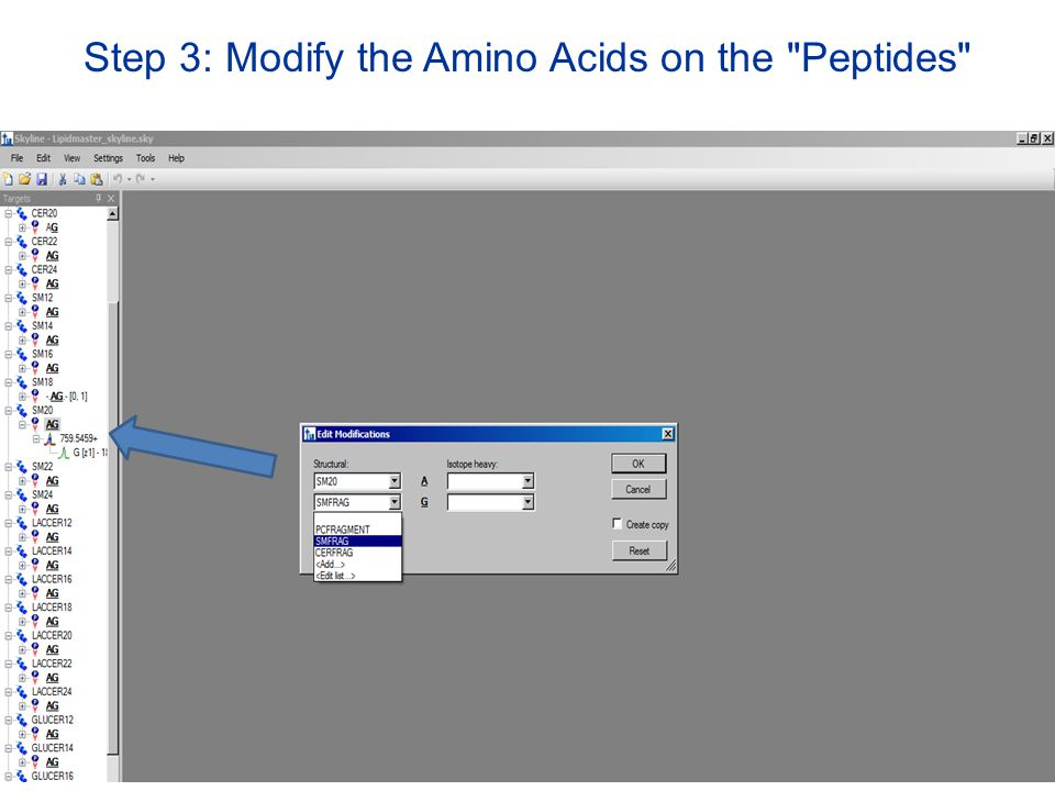 Step 3: Modify the Amino Acids on the Peptides
