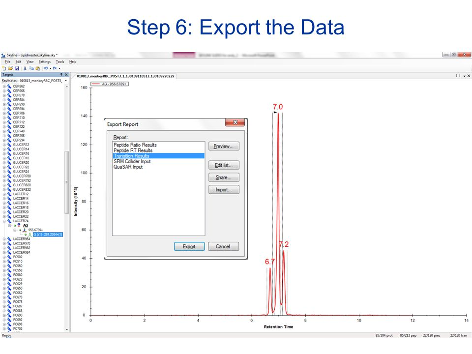 Step 6: Export the Data