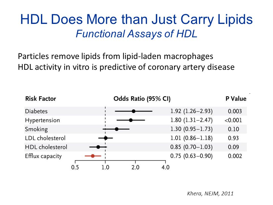 HDL Does More than Just Carry Lipids Functional Assays of HDL
